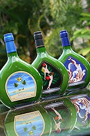 Tropical Tempation Bottles